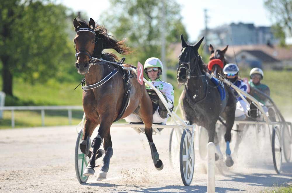 Magic Look in Janko Sagaj, zmagovalca pete dirke.