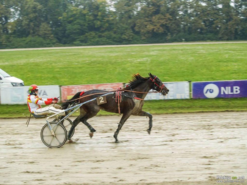 zmagovalec spominske dirke ludvika slavica st mon ami peski z voznico ajdo goren 29409921864 1
